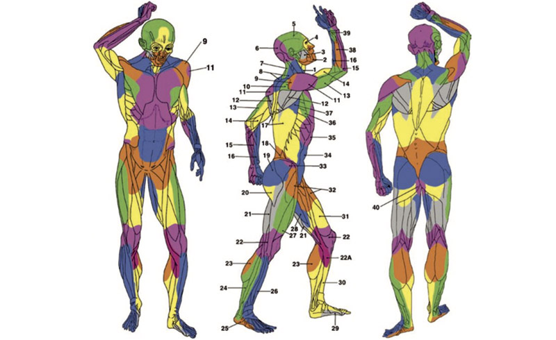 Медицинский научно-практический журнал «Science & Medicine»