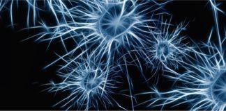Инсульт головного мозга: Факты, сиптомы и советы