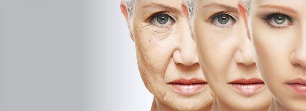 Ген долголетия